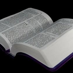 Hur man ber med hjälp av Bibeln