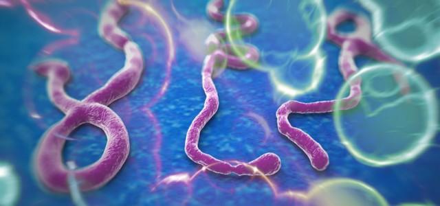 Vad kristna bör veta om ebolakrisen