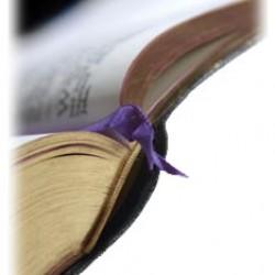 Att finna glädje i Bibelstudiet