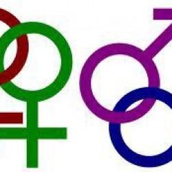 Fem frågor till kristna som tror att Bibeln stöder homoäktenskap