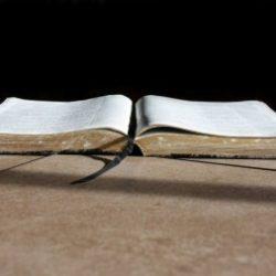 5 skäl att läsa hela Bibeln 2017