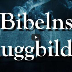 Bibelns skuggbilder (video från Logia)