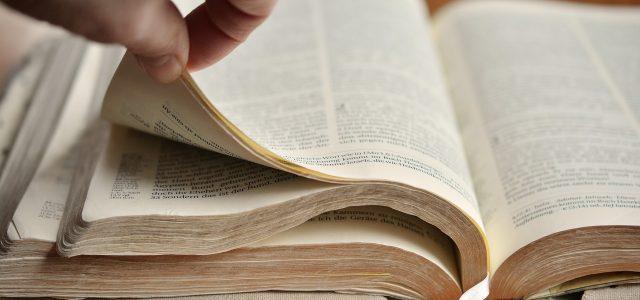 Läs Bibeln under 2020