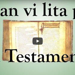 Kan vi lita på Nya Testamentet? (video från Logia)