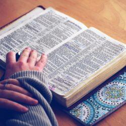 Bibliska argument för utläggande predikan