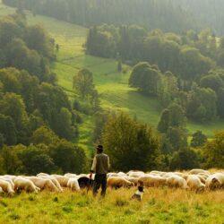 9 sätt att fostra ledare i din församling